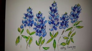 8 30 2014 Class results of Bluebonnets