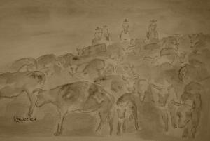 JULY Cattledrive